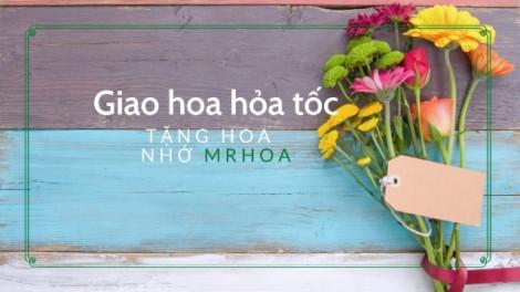 MrHoa - Shop hoa tươi Thành phố Cần Thơ, dịch vụ điện hoa nhanh chóng, đơn giản