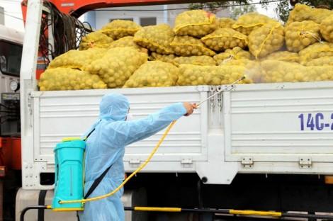 Tăng cường công tác vận tải hỗ trợ tiêu thụ nông sản