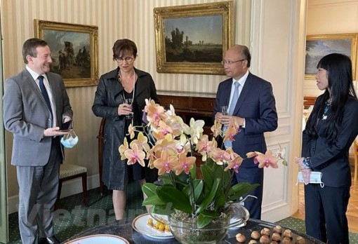 Vietnam, France look to beef up multifaceted cooperation