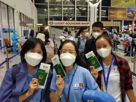 """Nhật Bản """"rộng cửa"""" đón điều dưỡng, hộ lý Việt Nam sang làm việc"""