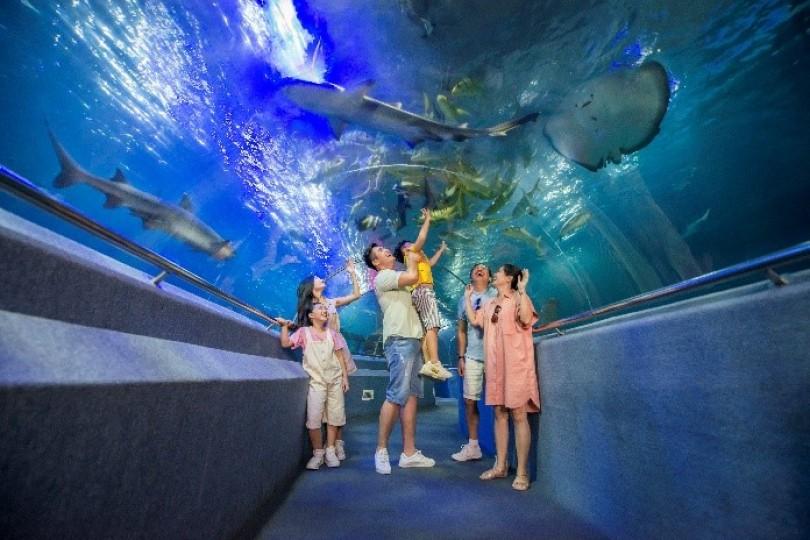 """""""Cánh cổng thần kỳ"""" bước vào thế giới đại dương kỳ bí"""