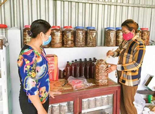Hỗ trợ phụ nữ nâng cao chất lượng cuộc sống