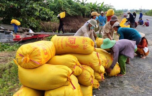 Thới Lai nỗ lực hoàn thành các chỉ tiêu phát triển kinh tế - xã hội